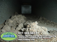 debris in ducts