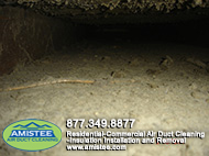 Ditry Ducts before cleaning