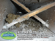 mold from the water damage duct