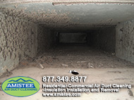 mold in ducts