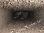 mold in air ducts addison township