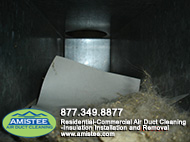 pet hair and dust in duct