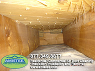 Pet Hair Air Duct Cleaning Rochester Hills
