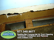 Pet Hair Air Duct Cleaning Wyandotte MI
